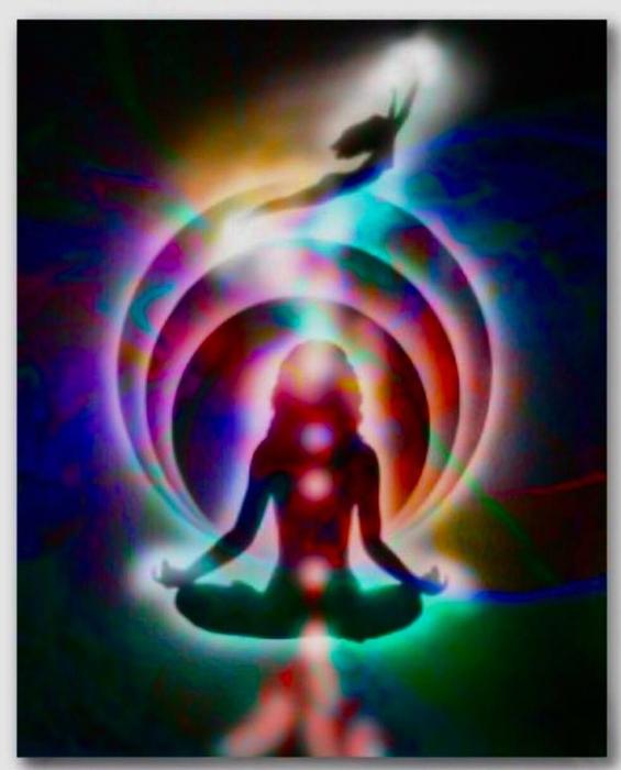 Lin's Services — Divine Innerzention