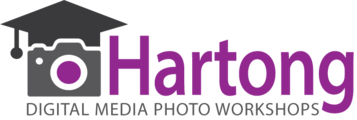 Malinda Hartong, Hartong Digital Media llc