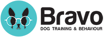 Bravo Dog Training & Behaviour Consulting