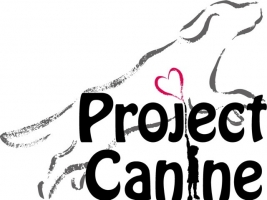 Project Canine