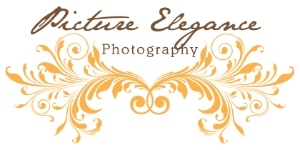Picture Elegance Photography