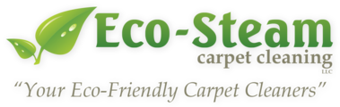 Eco-Steam Carpet Cleaning
