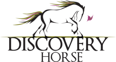Discovery Horse