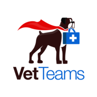 Vet Teams, LLC