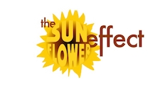 The Sunflower Effect  Courses