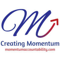 Sappari Solutions | Momentum Accountability