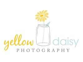 Yellow Daisy Photography