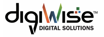 DigiWise Digital Solutions LLC