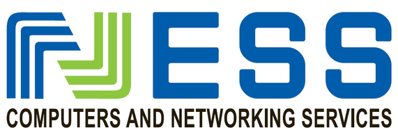 Ness Computer and Networking Service