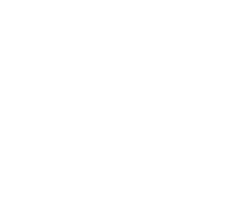The Black Light