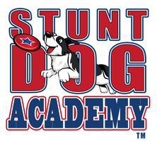 Stunt Dog Academy