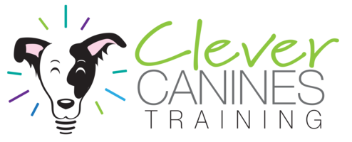 Clever Canines Training