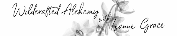 Wildcrafted Alchemy