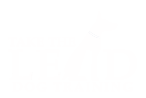 Take the Lead Dog Training
