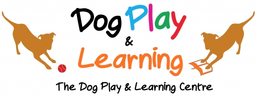 THE DOG PLAY CENTRE