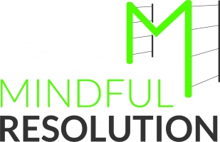 Mindful Resolution