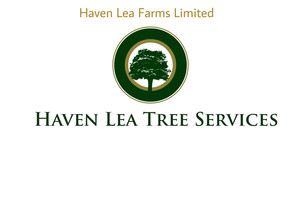 Haven Lea Tree Services