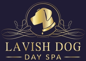 Lavish Dog Day Spa