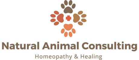 Natural Animal Consulting