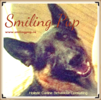 Smiling Pup, Holistic Canine Behaviour Consulting