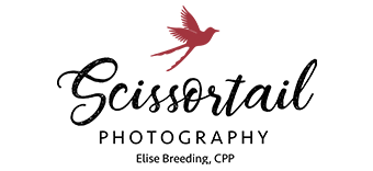 Scissortail Photography by Elise