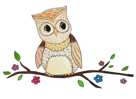 Little Owl Learning Centre Inc.