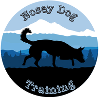 Nosey Dog Training