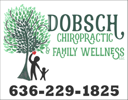 Dobsch Chiropractic & Family Wellness LLC
