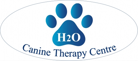 H2O Canine Therapy