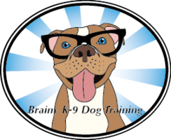 Brainy K9 Dog Training