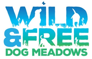 Wild and Free Dog Meadows