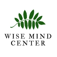 Wise Mind Psychotherapy Center L.L.C