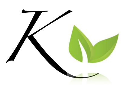 Kineo Life: Coaching, Strategy Consulting & Counseling