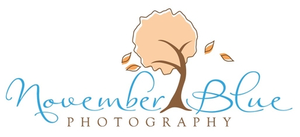 November Blue Photography