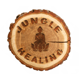 Jungle Healing  Therapies  &  Studio