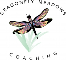 Dragonfly Meadows Coaching