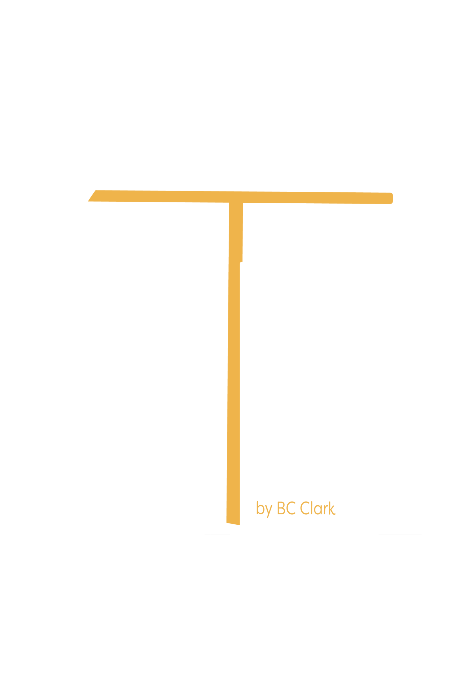 The Business ConnectionNe, LLC