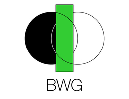 BWG Business Solutions