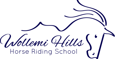 Wollemi Hills Horse Riding School