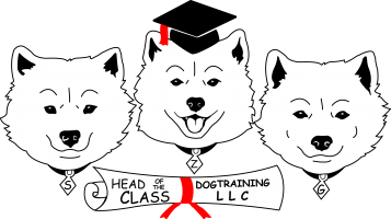 Head of the Class Dog Training LLC