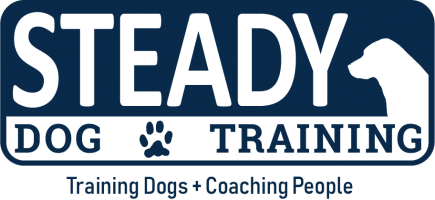 Steady Dog Training, LLC