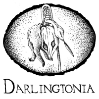 Darlingtonia Holistic Care