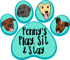 Penny's Play, Sit & Stay