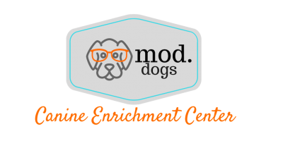 Mod.Dogs Canine Coaching LLC