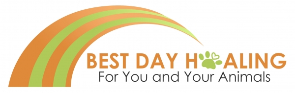 Best Day Healing: For You and Your Animals