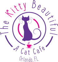 The Kitty Beautiful