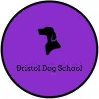 Bristol Dog School