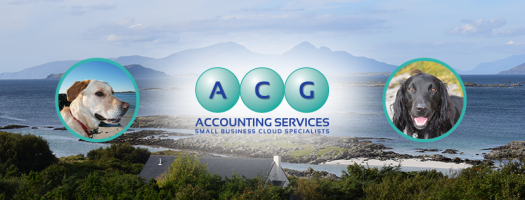 ACG Accounting Services