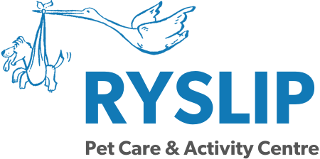 Ryslip Group Ltd