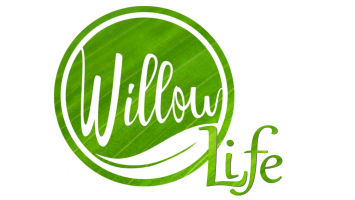 Willow Life Coaching and Counseling, LLC